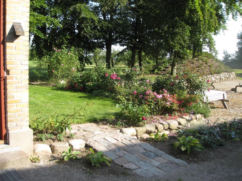 Roser, bøgetræer og kartoffelkælder - BBfyn
